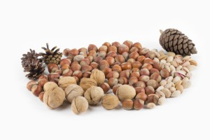 gain-healthy-weight-nuts