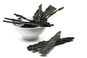 kombu-kelp-seaweed
